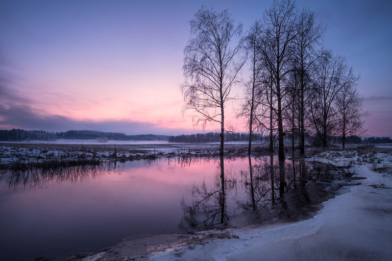 Tranquil landscape with river reflection at winter evening in Finland Darkness Finland Moment Of Silence Winter Atmospheric Mood Bare Tree Beauty In Nature Blue Cold Temperature Dawn Dusk Lake Landscape Nature Outdoors Purple Reflection Scenics Sky Snow Sunset Tranquil Scene Tranquility Tree Water