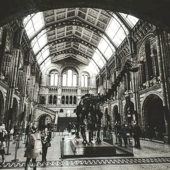 Unfortunately lost my original to this. Check This Out Natural History Museum Natural History London Blackandwhite Blackandwhite Photography Dinosaur People Photography People Sony Z5 Compact Life Ourhistory Taking Pictures Shadows & Lights Whats On The Roll