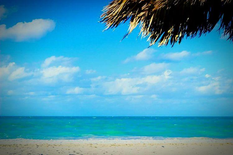 Daydreaming 🌴 Dreamscapes 🌊🌟 Hello World Enjoying Life 😍😌😊 Beachwalk Paradise Beach 💙