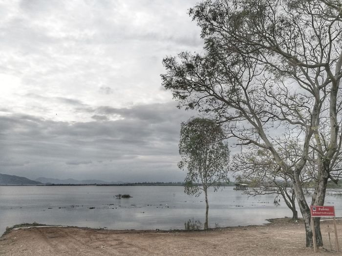 Sea Nature Water Beach Tree No People Beauty In Nature Growth Outdoors Day Horizon Over Water Scenics Sky Cloud - Sky Thailand Tree First Eyeem Photo