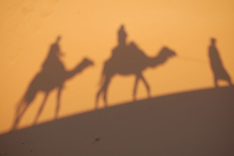 Silhouette people riding on sand at desert