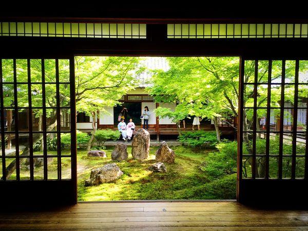 建仁寺 京都 Kyoto Kyoto, Japan Japanese Garden Travel Destinations Hello World Enjoying Life Relaxing Kyoto Garden 3XSPUnity Young Women