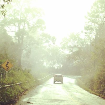 Go forward to silent hill!!! Chiangmai Thailand