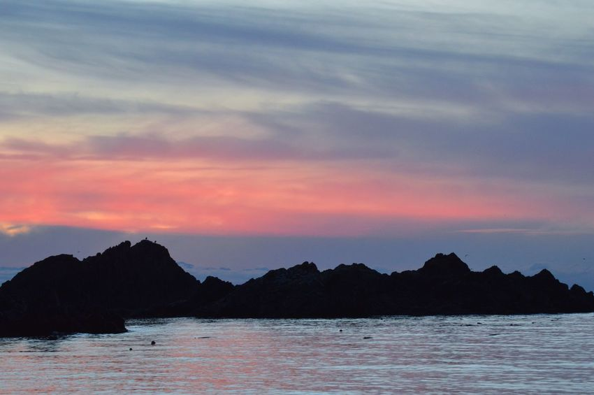 Pink sunset at Rosario Beach. Rocks Sunset_collection PNW Anacortes Ocean Sunset Lovers Pink Reflections In The Water No People Beach Nature Landscape Water Sunset Outdoors Scenics Sky Beauty In Nature