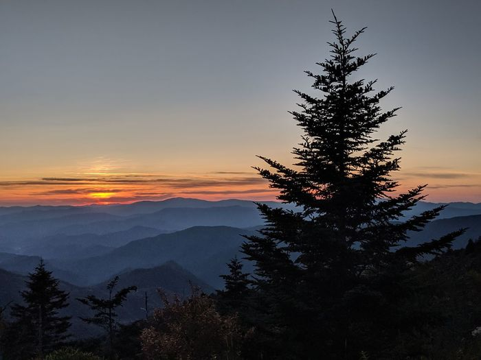 Silhouette tree on mountain against sky during sunset