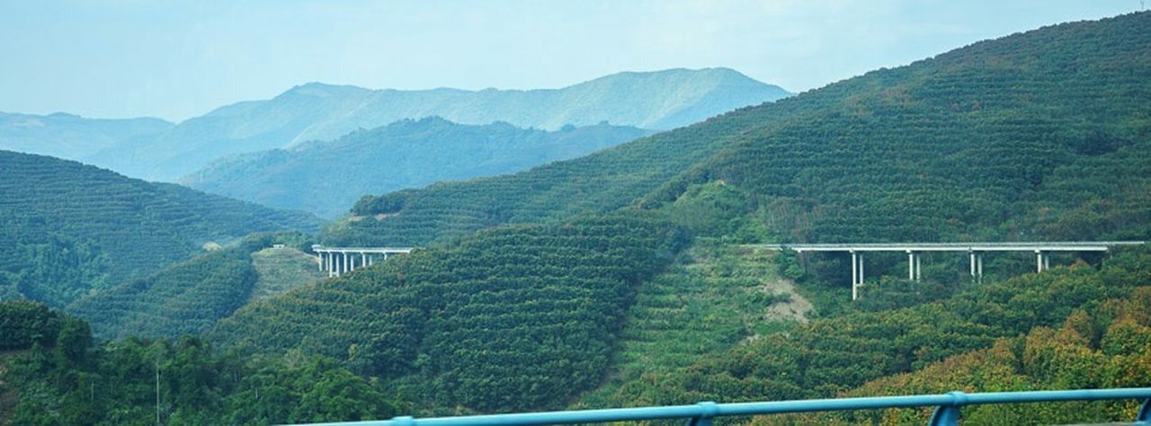 On the road from Mengla to Jinghong, China. On The Road Bridge Rubber Tree Xishuangbanna Nature Landscape Yunnan Traveling