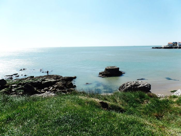 Sea Horizon Over Water Water Nature Beauty In Nature Scenics Tranquility Tranquil Scene Rock - Object Clear Sky No People Idyllic Outdoors Day Grass Sky