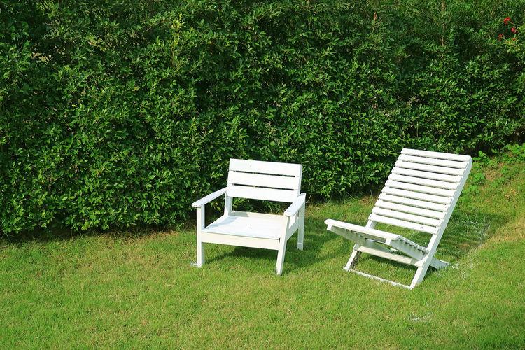 Empty bench in field