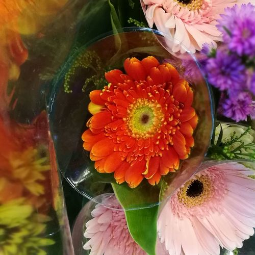 Colourful flowers for beloved one Happy Mothers Day ❤ Huawei P9 Leica
