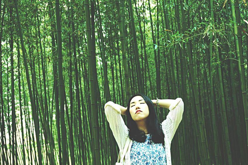 Bamboo Forest Traveling That's Me Happy Weekend !!! Open Edit EyeEm Nature Lover EyeEm Korea