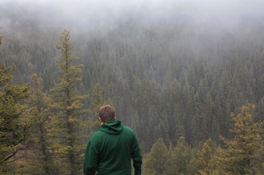 Hoodoo lookout in Banff National Park Adult Beauty In Nature Breathtaking Day Evergreen Tree Fog Forest Mountain Nature Nature One Man Only One Person Outdoors People Pine Woodland Rear View Tree