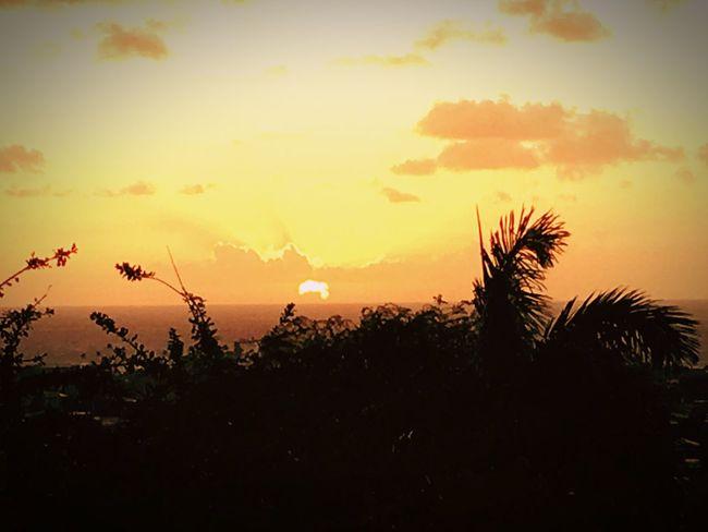 Hawaii Honolulu  Showcase: December Eye4photography  Scenics Sky Morning Sky Morning Light Sunrise Water Coastline