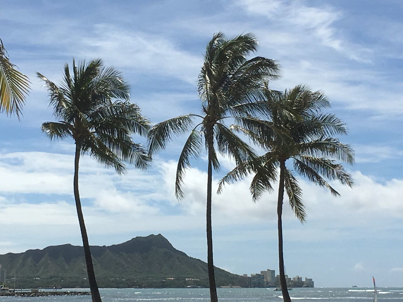 cloud - sky, scenics, sky, palm tree, sea, beauty in nature, water, nature, tree, day, tranquility, mountain, tranquil scene, outdoors, mountain range, no people, tree trunk, horizon over water, beach, growth