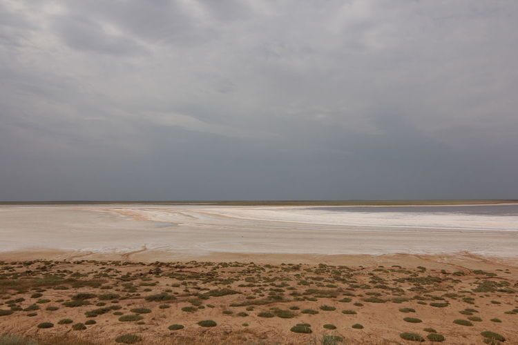 Salt lakes in the steppes of Kalmykia. Cloud - Sky Sky Land Sand Scenics - Nature Environment Beach Landscape Tranquility Beauty In Nature Horizon Desert Water No People Tranquil Scene Nature Sea Overcast Day Outdoors Climate Arid Climate Salt Flat Salt Lake Kalmykia