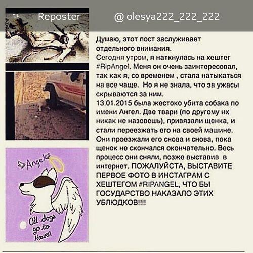 Repost from @TopRankRepost TopRankRepost @olesya222_222_222