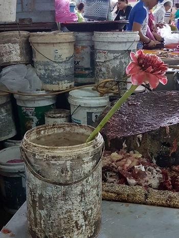 Flower Head Flowers,Plants & Garden Flowers, Nature And Beauty Flowerphotography Market Stall Marketplace Lotus Flower Lotusflower Dirty Water  Solitary Flower