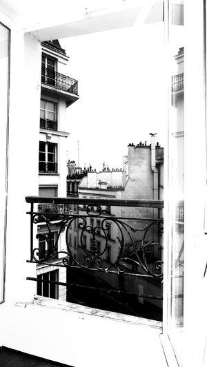 The Chimneys Of Paris Roofs View From The Top View Through The Window Backyard Atmosphere Classical Balcony Grid Early Sunday Morning City Houses Street Portrait No Life In The Streets No People Black And White Showcase April Paris, France  Home Is Where The Art Is Monochrome Photography