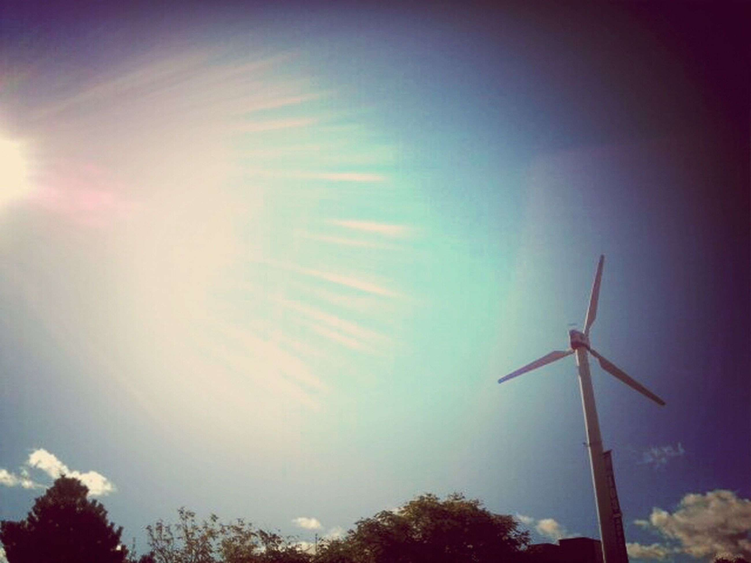 low angle view, sun, sky, tree, sunbeam, sunlight, alternative energy, lens flare, renewable energy, fuel and power generation, wind power, silhouette, environmental conservation, windmill, wind turbine, nature, clear sky, blue, outdoors, no people
