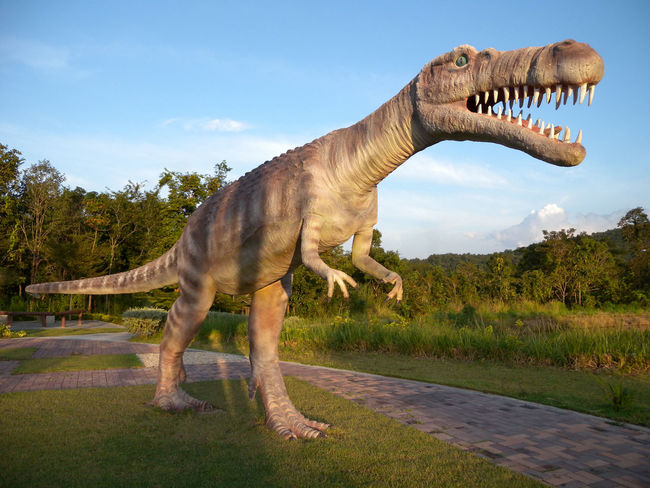 Dino Dinosour Park Khon Kaen Dinosaurus Dinosour Man Made Object Mouth Open One Animal Outdoors Phuwiang