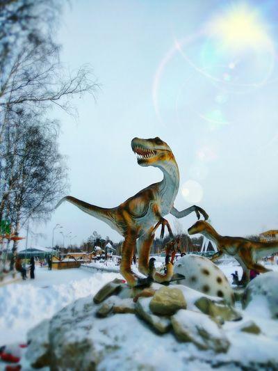 Dino's Photography Dinosaurs Time Dino Park Dinosaur Dinosaur Land Dinosaur World Dino