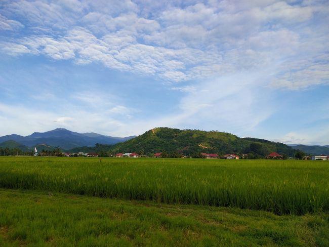 lubuak anau Lubuak Anau Tea Crop Mountain Agriculture Rice Paddy Rural Scene Field Sky Landscape Cloud - Sky Mountain Range