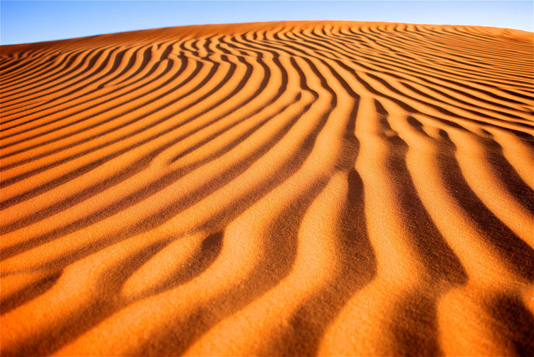 Sand pattern carved by the wind. Empty Quarter Lines Wave Arid Climate Beauty In Nature Climate Desert Environment Land Landscape Natural Pattern Nature No People Non-urban Scene Outdoors Pattern Remote Sand Sand Dune Scenics - Nature Sky Tranquil Scene Tranquility Wave Pattern