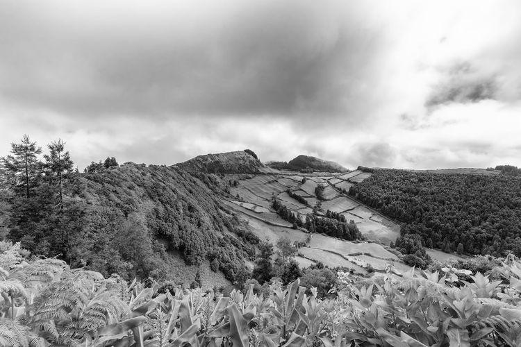 Beautiful black and white view of the edge of the Sete Cidades caldera on Sao Miguel in the Azores. Sete Cidades Azores Azorean Açores Sao Miguel Crater Caldera Caldeira Alferes Village Lagoa Azul Verde Clouds Farm Pasture Hike View Landscape Tourism Trek Volcano Black And White