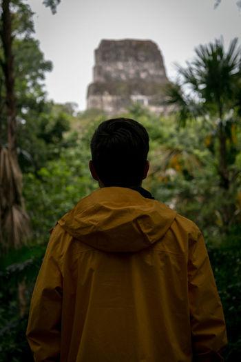 looking at Tikal Back Green Guatemala Man Ruins Tikal Travel Adventure Forest History Jungle Maya Portrait Temple Vacation Yellow