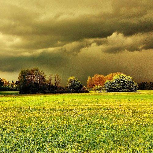 #wiese #meadow #gewitter #thunferstorm #wolken #clouds #franken