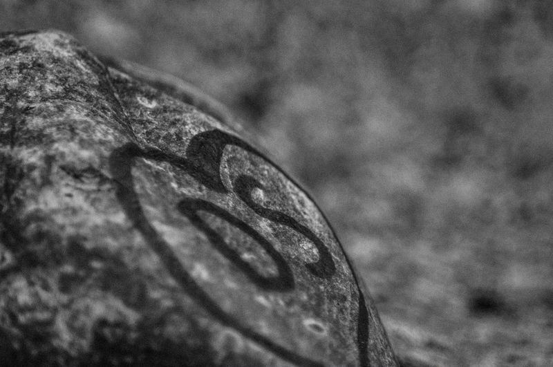 A rock with the graffiti that says DS Castlewood Canyon State Park Colorado Close-up Day Ds Focus On Foreground Grafitti No People Outdoors Textured  Black And White Friday