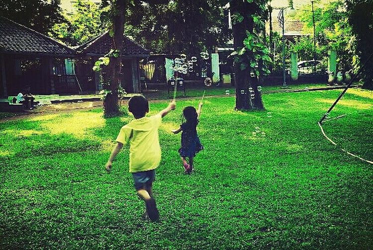 Kids and bubbles. Tree Full Length Childhood Togetherness Girls Standing Bonding Rear View Grass Architecture Children Playground