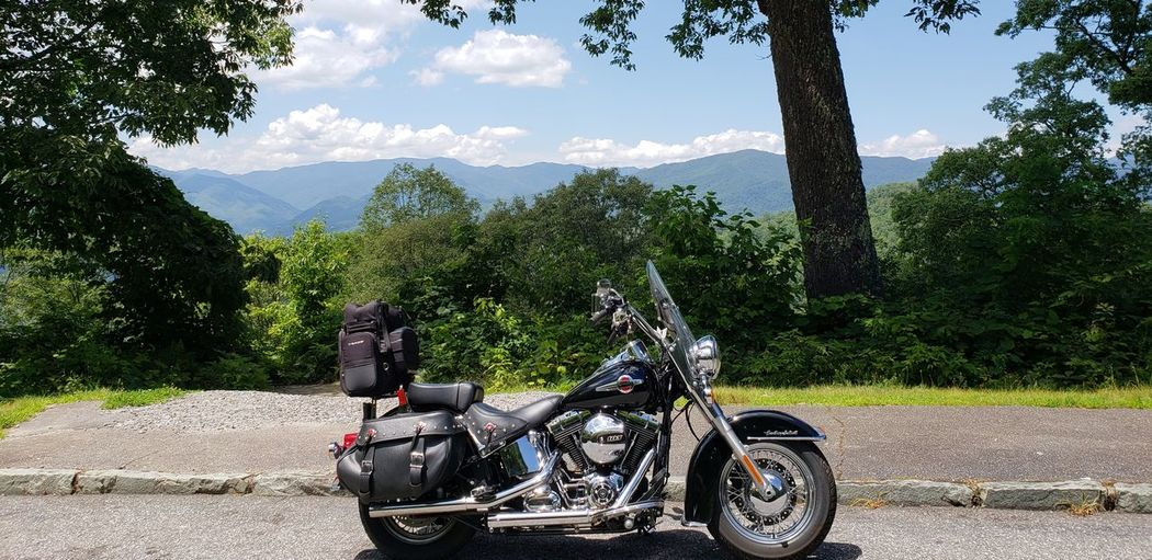 EyeEm Selects Tree Motorcycle Stationary Sky