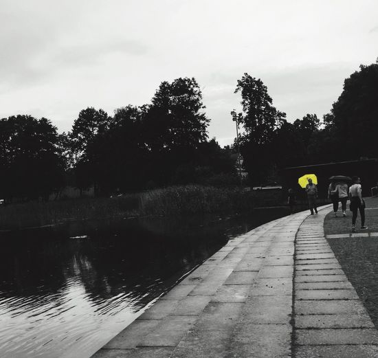 The Week On EyeEm Sky Water Outdoors Nature Lake Yellow One Color Tree People Summer