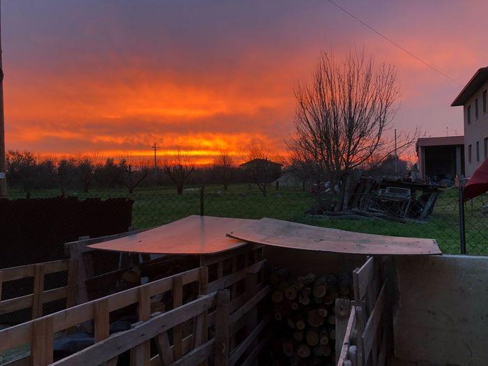 Buona serata Sunset EyeEm Nature Lover EyeEm Best Shots EyeEmNewHere Sunset Sky No People Nature Outdoors Beauty In Nature Tree Day