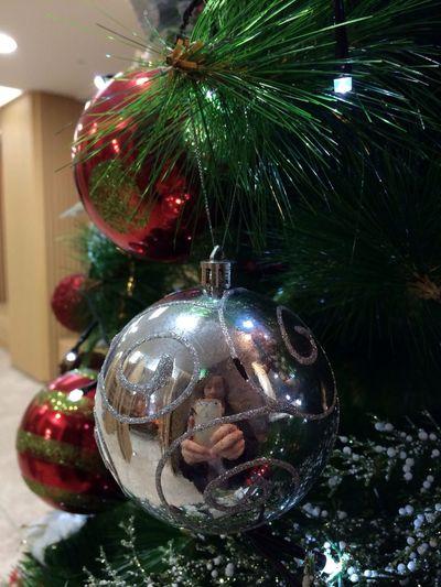 대림절 셋째주 Merry Christmas~! Merry Christmas! Christmas Tree Hi!