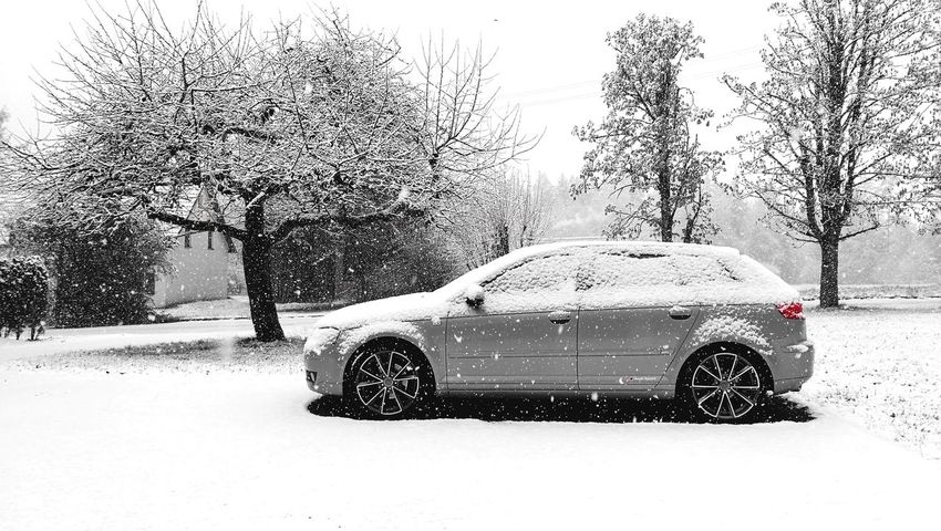 Car Weather Wet Snow Extreme Weather Outdoors Storm Winter Nature Day Audi Audi A3 Audioporn Cars Audisport Sportscar