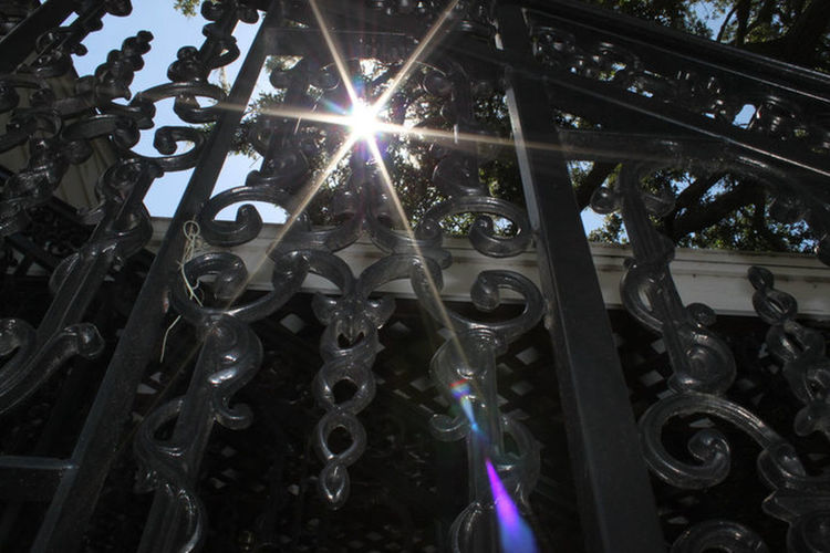 Wrought Iron Design Fencing Sunlight