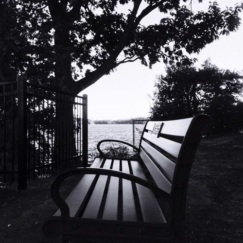The end is always a new beginning Endlessness Beginning Branch Lakegeorge Sit Seat Park TakeASeat