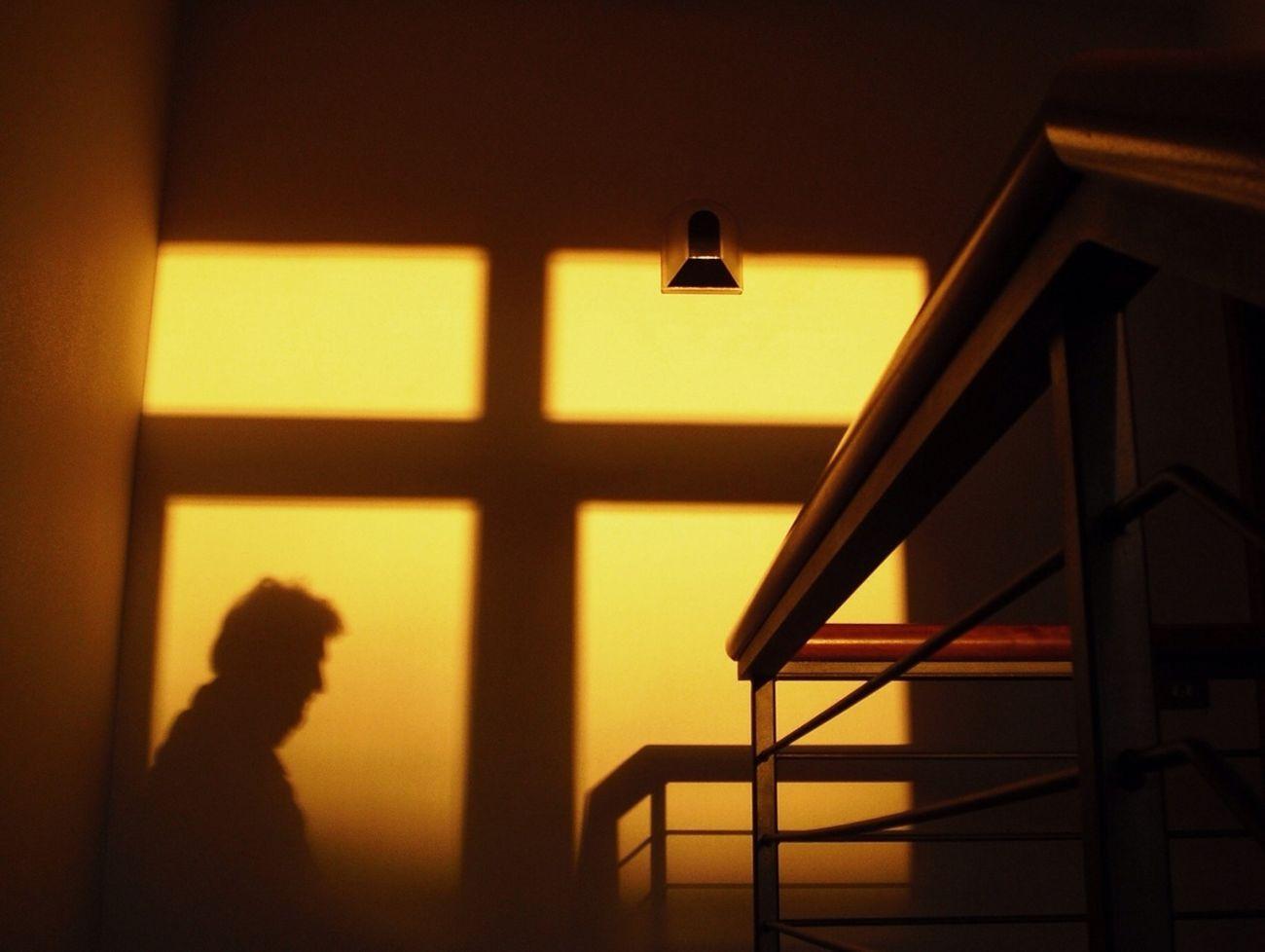 Silhouette Hide