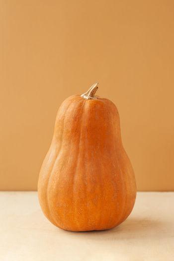 oval pumpkin of the matilda variety on a monochrome beige background, food minimalism trend