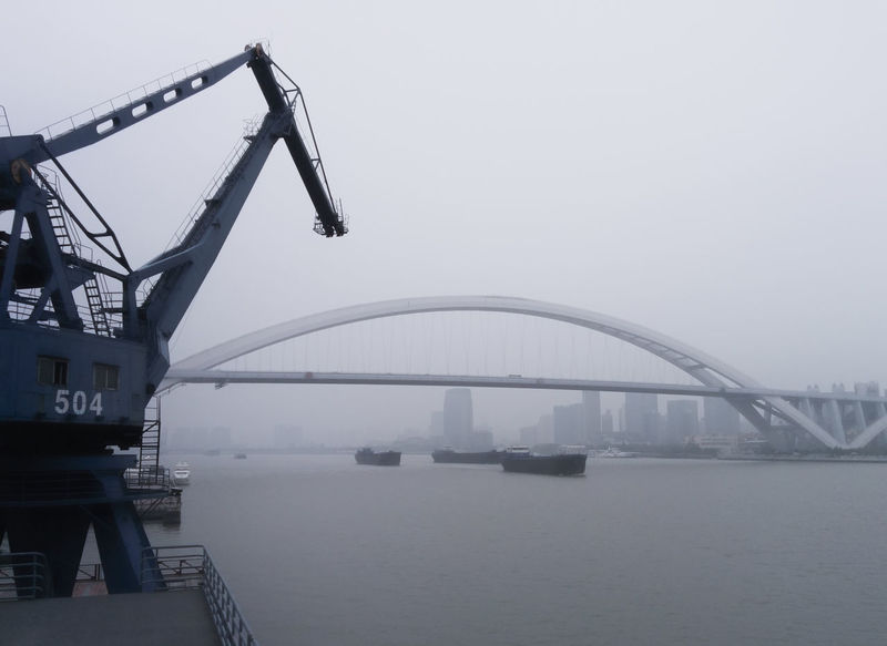 Bridge Built Structure China Construction Crane Engineering Exploring Foggy Metal Outdoors Port River Shipping  Ships Traveling Traveling In China World Expo