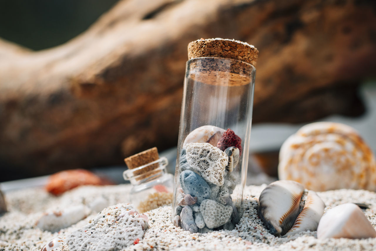 Close-up of stones and seashells in container at beach