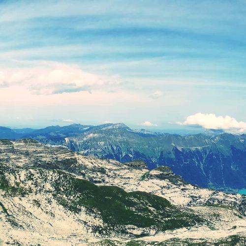 Swiss Swiss