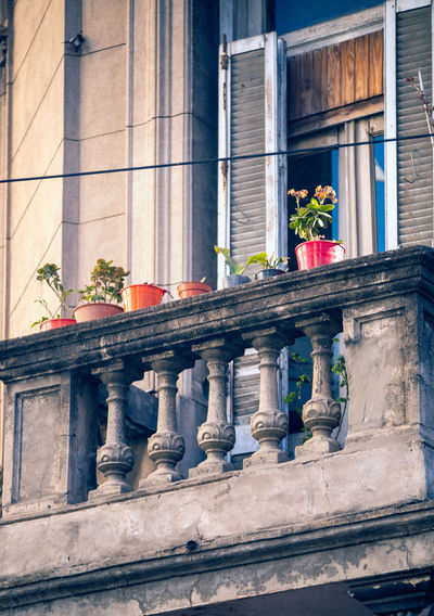 Low angle view of potted plants in balcony of building