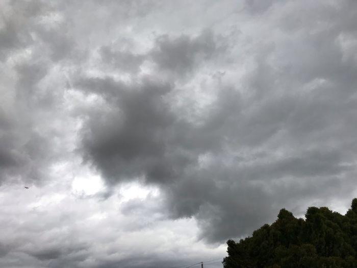 Cumulus Meets