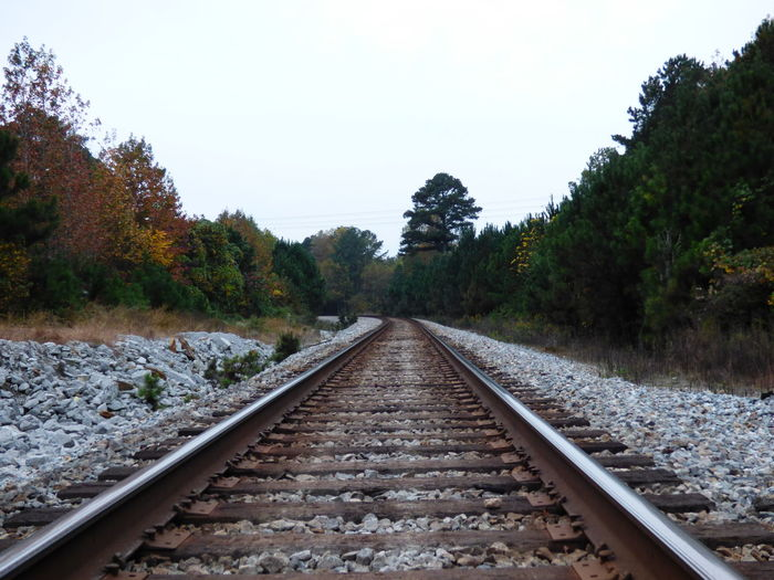 Railroad track amidst trees against clear sky