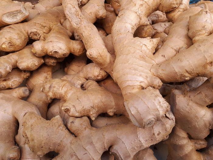 ginger Ginger