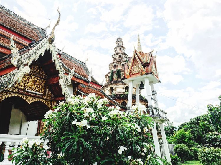 Architecture Building Exterior Religion Sky Nature Thailand Chiang Mai | Thailand Temple Buddhism