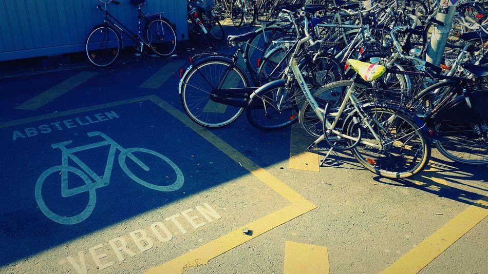 Bikes Münster Impressionen Fahrradstadt Münster Fahrräder Meinmünster Crimescene