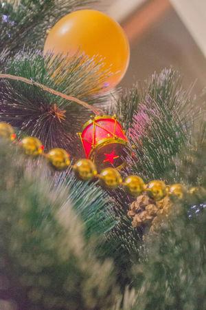 Праздник к нам приходит! Yellow Christmas Tree Christmas Decoration Christmas Lights Christmastime Merry Christmas MerryChristmas Merry Xmas! Arbol De Navidad Be. Ready.
